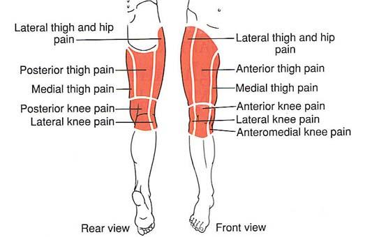 Sharp Pain in Thigh | Med-Health.net